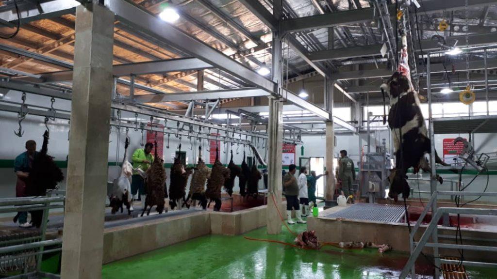طراحی و ساخت کشتارگاه های صنعتی دام